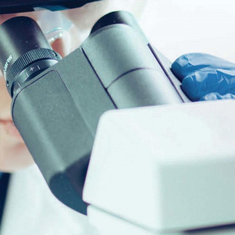microscopio-borsub
